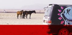 namibia-south-africa-campervan