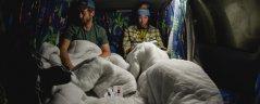 Safari Campervan Europe